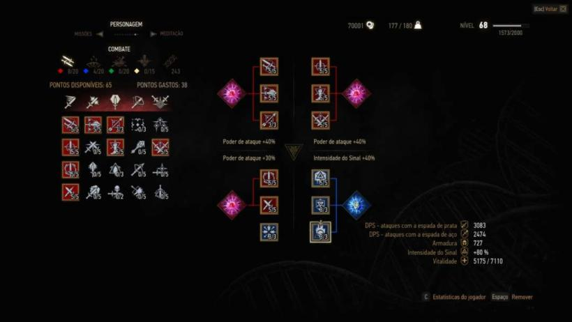Witcher 3 build Warmage